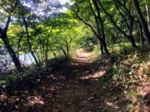 赤城山大沼周遊歩道